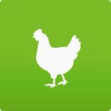 家禽养殖技术