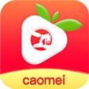 草莓app下载免费版下载新版