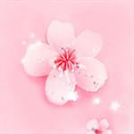 梅花视频app下载汅api免费下载破解版